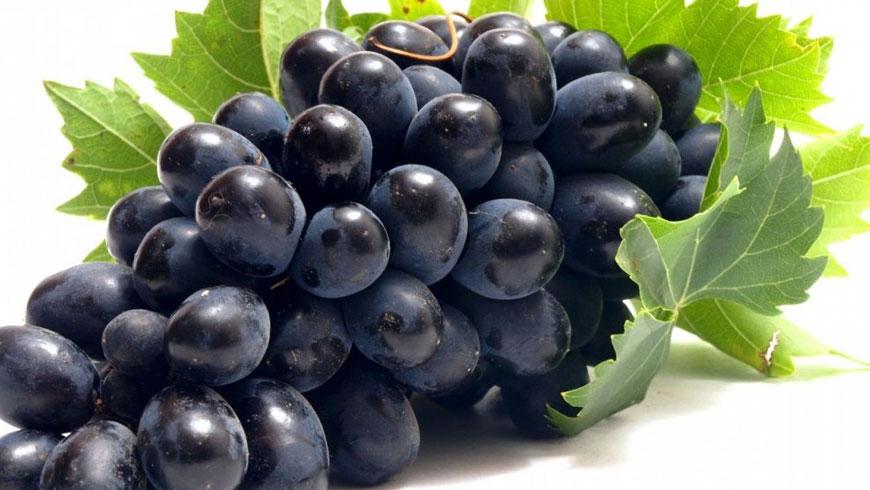 Minuman Anggur Tidak Otomatis Khamr